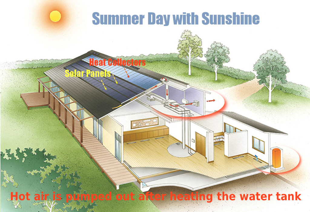 summer-daytime-sunny